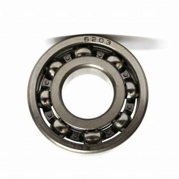Distributor of Zys Roller Bearing Needle Roller Bearing HK0609 with Drawn up Type